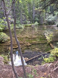 The First Grassi Lake