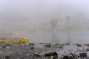 Hot Tarn in fog